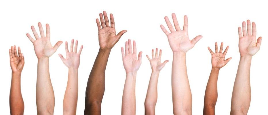 Hands raised voting